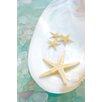 Alan Blaustein Sea Glass with Starfish 4 Photographic Print on Canvas