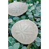 Alan Blaustein Sea Glass with Sand Dollars 3 Photographic Print on Canvas