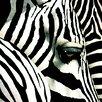 "Portfolio Canvas Decor ""Do Zebras Dream In Color"" Painting Print on Wrapped Canvas"