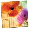 Portfolio Canvas Decor Penchant for Poppies II by Mindy Sommers Painting Print on Wrapped Canvas
