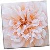 Portfolio Canvas Decor Porcelain Rose by Rebecca Swanson Photographic Print on Wrapped Canvas