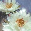 Portfolio Canvas Decor Lily Pond 1 by Noah Bay Painting Print on Wrapped Canvas