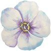 Portfolio Canvas Decor Bloom by Jean Plout Painting Print on Wrapped Canvas