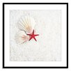 Gallery Direct Stars & Shells Framed Photographic Print