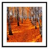 Gallery Direct Fall Journey Framed Photographic Print
