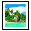 Gallery Direct Exotic Peace Framed Photographic Print