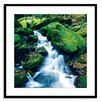 Gallery Direct Up A Creek Framed Photographic Print