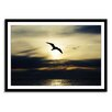 Gallery Direct New Era Seagull Framed Photographic Print