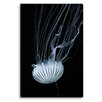 Gallery Direct Jellyfish by New Era Photographic Print on Canvas