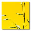 Gallery Direct Harmonia IV by Sia Aryai Photographic Print on Wrapped Canvas