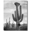 Gallery Direct 'Saguaros' by Ansel Adams Photographic Print on Wrapped Canvas