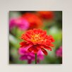 Gallery Direct From the Flower Garden by Beer Photographic Print on Canvas