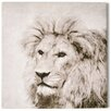Graham & Brown Spring 2015 Roar Photographic Print on Wrapped Canvas