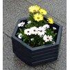 dCor design Sechseckiger Blumenkübel Abruzzo