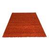 Castleton Home Teppich Shagi in Kupfer