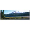 Castleton Home 'World Panoramic-U.S.A. Panoramic' Photographic Print