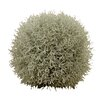 Castleton Home Grass Ball