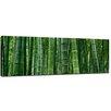"Castleton Home Leinwandbild ""Bambuswald in Sichuan China"", Fotodruck"