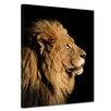 "Castleton Home Leinwandbild ""Großer Afrikanischer Löwe"", Fotodruck"