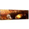 "Castleton Home Leinwandbild ""Carlsbad Caverns"", Fotodruck"