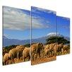 "Castleton Home 3-tlg. Leinwandbilder-Set ""Elefanten am Kilimandscharo"", Fotodruck"