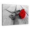 """Castleton Home Leinwandbild """"Rose Steg"""", Fotodruck"""