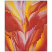 Castleton Home 'Red Canna' by O'Keeffe Graphic Art