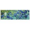 """Castleton Home Leinwandbild """"Alte Meister Iris"""" von Vincent van Gogh, Kunstdruck"""