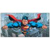 Castleton Home 'DC Comics-Flying Over Metropolis' Graphic Art