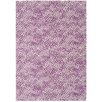 Castleton Home Dot Pink/Purple Area Rug