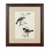 Castleton Home Birds 2 Framed Art Print