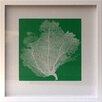 Castleton Home Pop Coral IV Framed Graphic Art