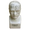 Castleton Home Ceramic Phrenology Head Bust