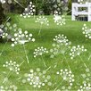 Odhams Press Dandelion Decorative Window Film