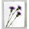 Radiant Art Studios X-ray Designs Carnations Graphic Art Plaque