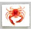 Radiant Art Studios X-ray Designs Red Crab Graphic Art Plaque