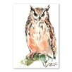 Americanflat Owl by Suren Nersisyan Art Print