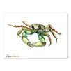 Americanflat Crab by Suren Nersisyan Art Print in Green
