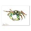 Americanflat Poster Crab, Grafikdruck von Suren Nersisyan in Grün