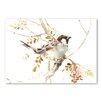 "Americanflat Poster ""Sparrow"" von Suren Nersisyan, Kunstdruck in Beige"