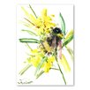 Americanflat Bee by Suren Nersisyan Art Print