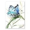 Americanflat Butterfly II by Suren Nersisyan Art Print in Blue
