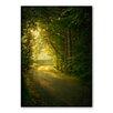 Americanflat Leinwandbild Forest Day, Grafikdruck von Lina Kremsdorf