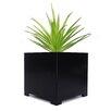 Alora Steel Planter Box - Color: Black - Size: 10 inch High x 10 inch Wide x 10 inch Deep - NMN Designs Planters