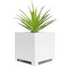 Alora Steel Planter Box - Size: 10 inch High x 10 inch Wide x 10 inch Deep - Color: White - NMN Designs Planters