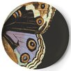 Thomas Paul Metamorphosis Dinner Plate (Set of 4)