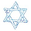 Brite Ideas Star of David LED Light