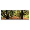 """Artist Lane Leinwandbild """"Golden Grove"""" von Andrew Brown, Fotodruck"""