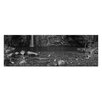 Artist Lane Emma Gorge by Andrew Brown Photographic Print Wrapped on Canvas in Black/White