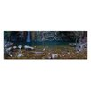 Artist Lane Emma Gorge by Andrew Brown Photographic Print Wrapped on Canvas